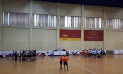 https://www.sportinfo.az/idman_xeberleri/hendbol/47167.html