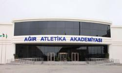 https://www.sportinfo.az/idman_xeberleri/diger_novler/78079.html