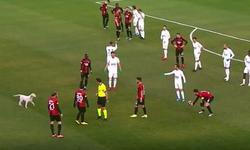https://www.sportinfo.az/idman_xeberleri/turkiye/78280.html