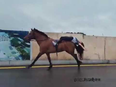 Azərbaycanlı qızdan atla möhtəşəm performans - VİDEO