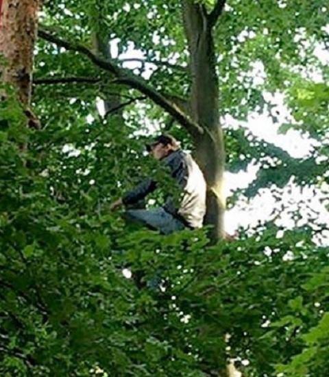 Futbol sevgisi adamı 12 metrlik ağaca çıxarırmış… - FOTO