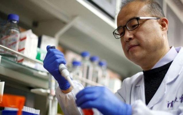 Koronavirusa çarə tapdılar? - Çinli alimlərin yeni kəşfi