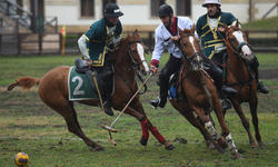 https://www.sportinfo.az/idman_xeberleri/atciliq/101572.html