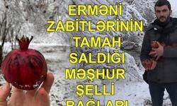 https://www.sportinfo.az/idman_xeberleri/bizimkiler/104299.html