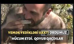 https://www.sportinfo.az/idman_xeberleri/hadise/104319.html