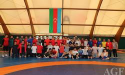 https://www.sportinfo.az/idman_xeberleri/gules/114834.html